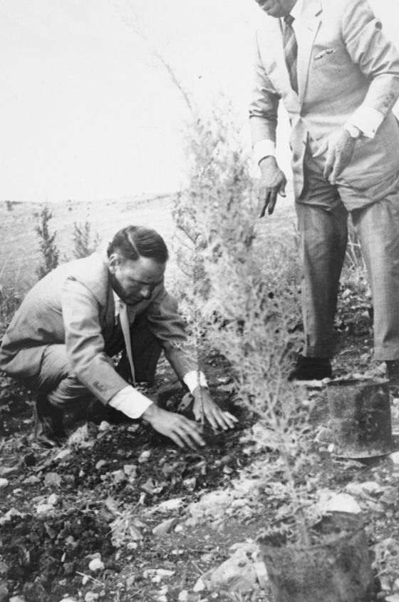 Frank Sinatra plants a tree in the hills of Jerusalem in 1962. Photo courtesy of KKL-JNF Archive