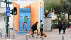 Tel Aviv has 25,000 registered hounds – that's one pooch to every 17 human city-dwellers. The city claims it is the highest per-capita ratio of dogs to people in the world. Photo by Flash90