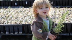 A child getting ready to plant a tree in the KKL-JNF Eshtaol Nursery in celebration of Tu B'Shvat. Photo by Nati Shohat/Flash90
