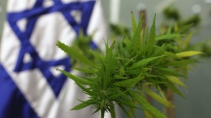 Photo illustration of Israel's medical marijuana industry by Kobi Gideon/FLASH90