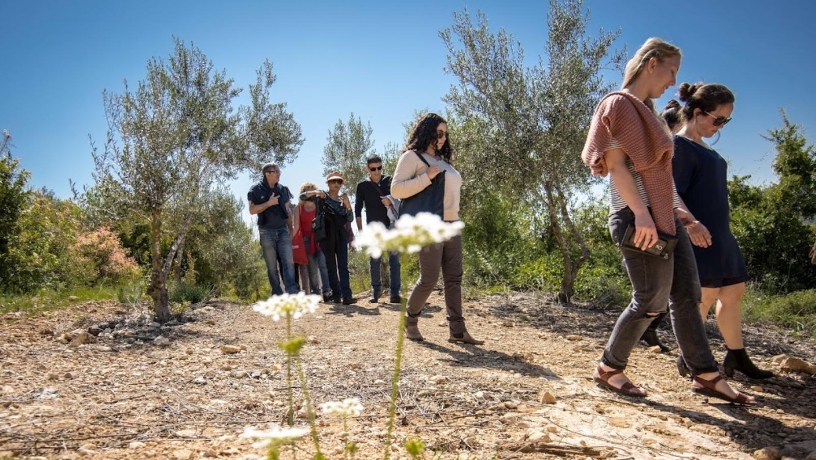 Nature walks at Kibbutz Tzuba. Photo: courtesy
