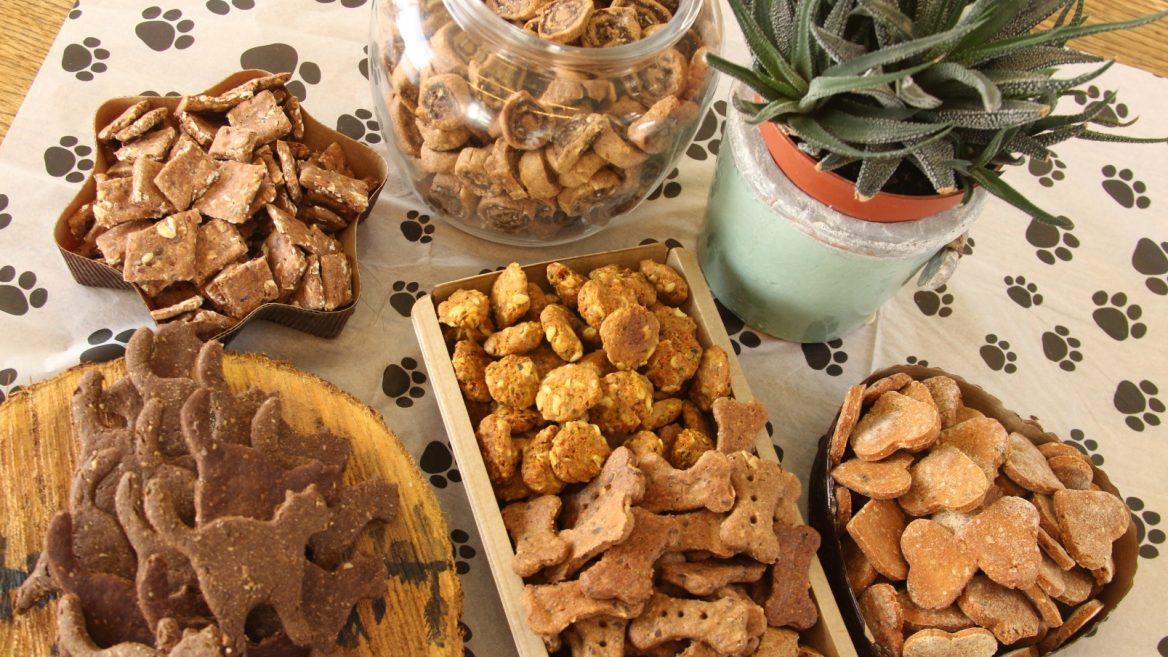 Bark If You Love Israeli Gourmet Dog Biscuits Israel21c