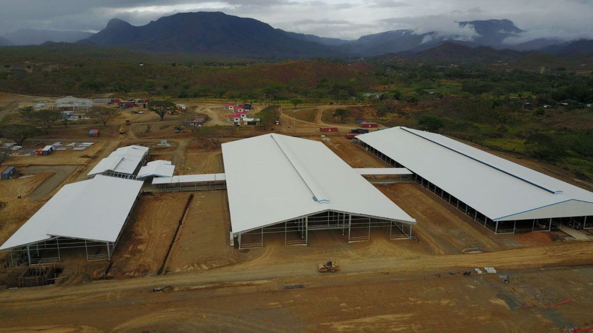 Israelis Build First Dairy Farm In Papua New Guinea Israel21c