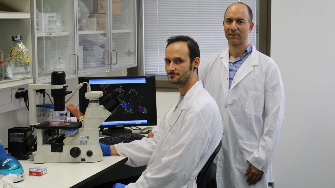Israelis discover promising treatment for aggressive brain tumors