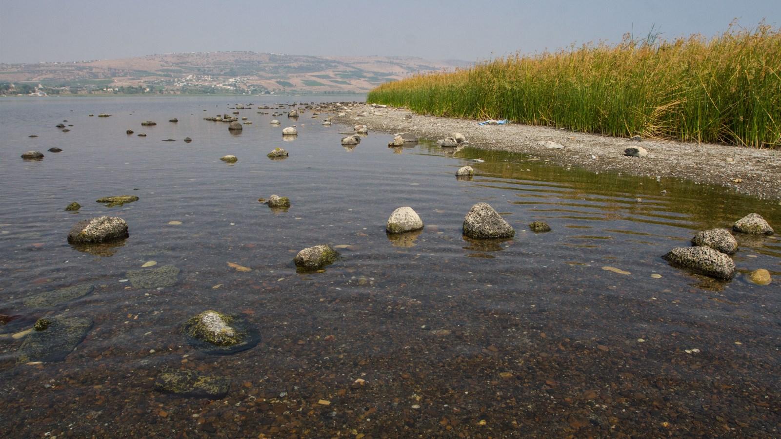 How Israel swims against tide of worldwide water crisis | ISRAEL21c