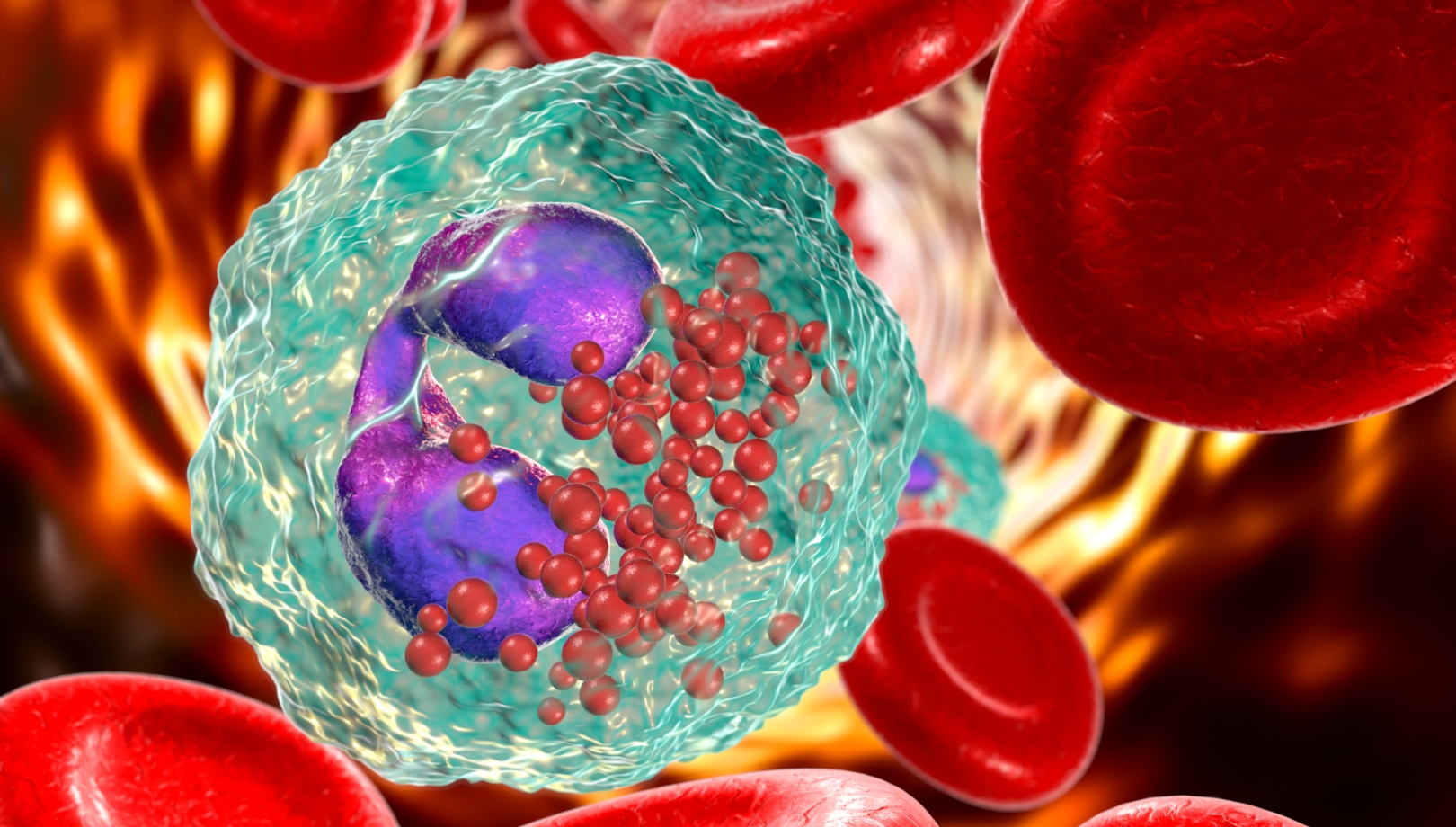 Asthma Causing Blood Cells Could Help Fight Colon Cancer Israel21c