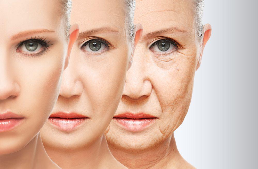 Israel fast becoming world hub of aging industry - ISRAEL21c