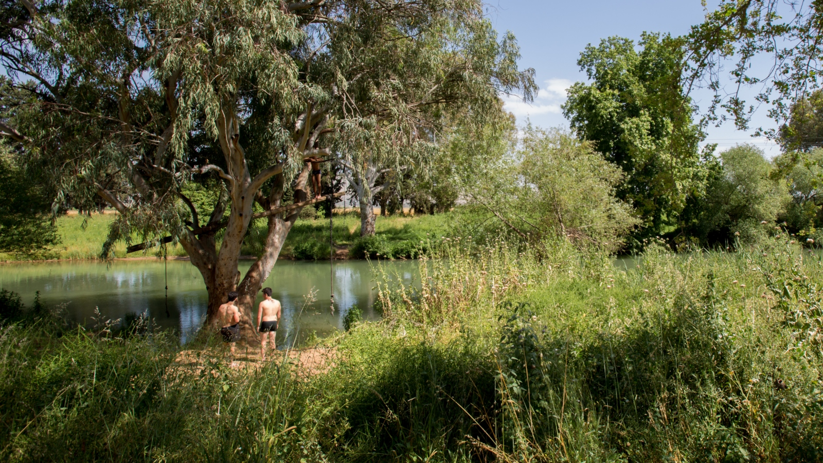 Gather participants can spend their lunch hour enjoying the natural surroundings of a kibbutz. Photo by Almog Gurevich