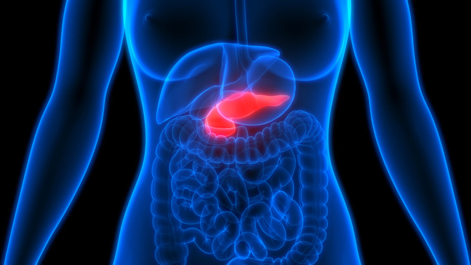 Scientists Discover Molecule That Destroys Pancreatic Cancer Cells Israel21c