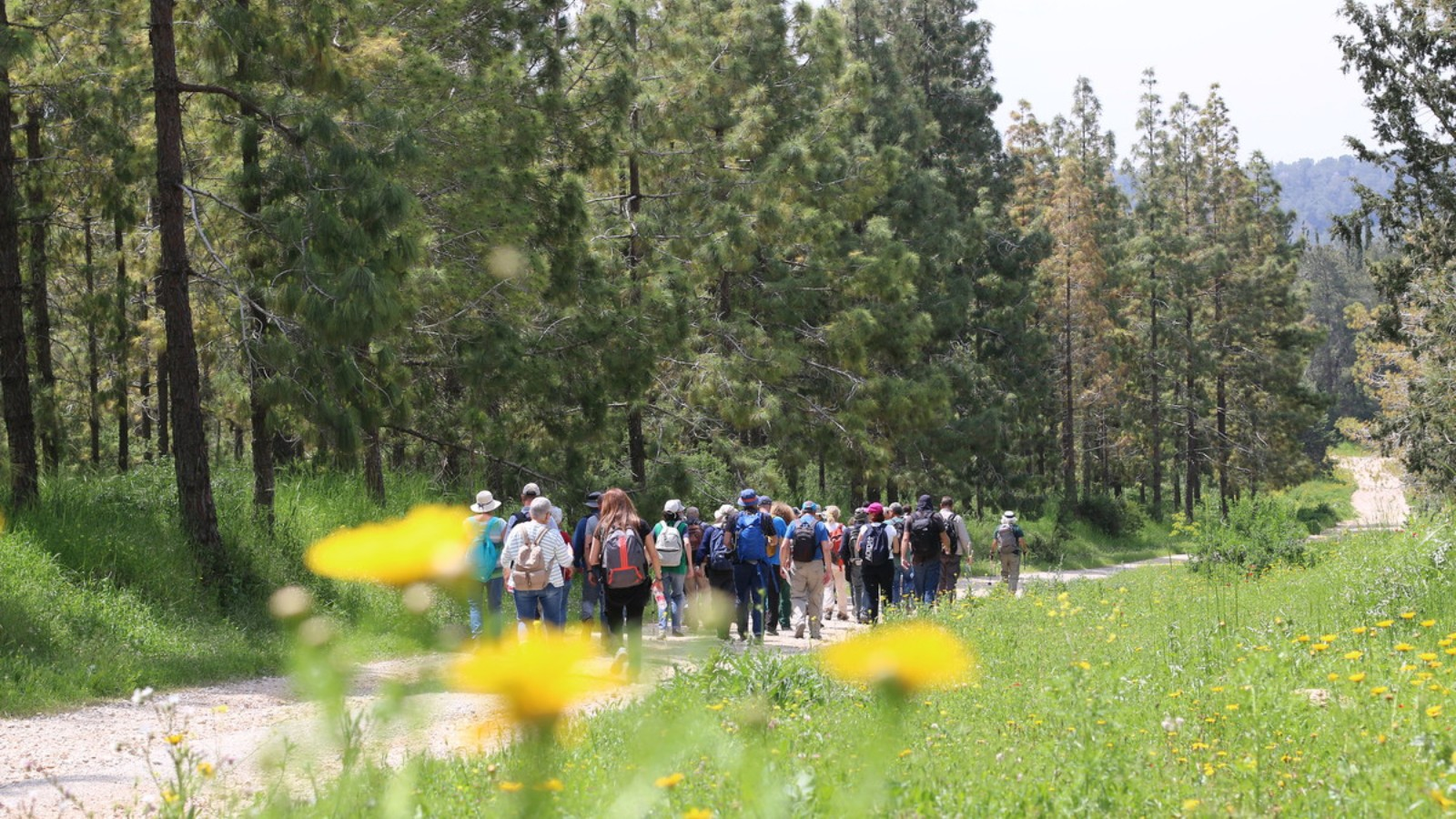 Hike in Jesus's footsteps along the Emmaus Trail