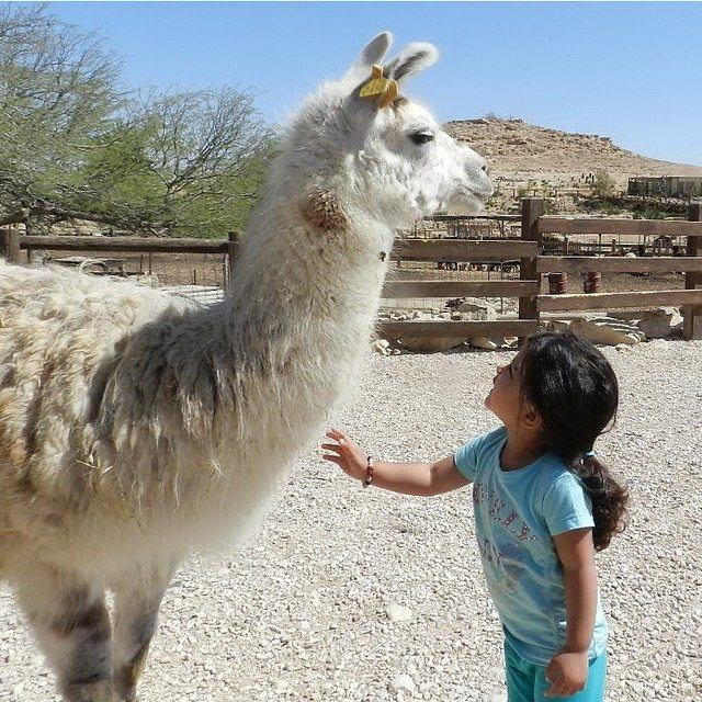 Great friends come in all shapes and sizes! #Summer #Friendship #ISRAEL21c