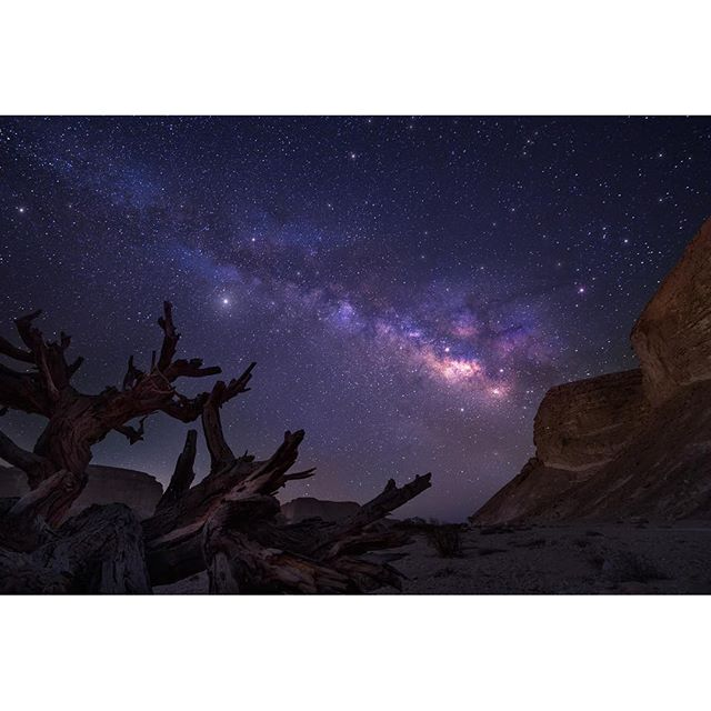 Bet you\'ve never seen a night sky like this! #Negev #israel #nightsky
