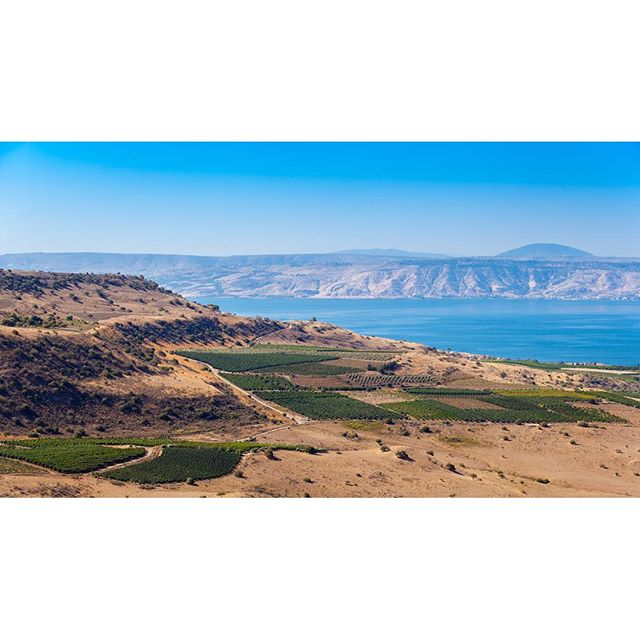 There\'s nothing like this view! The Kinneret, the Golan, and some of Israel\'s most famous vineyards.