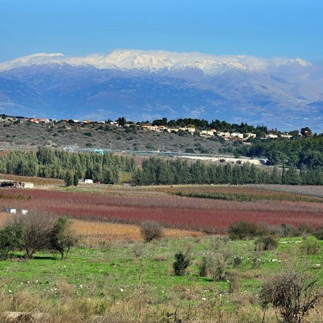 No matter the season, the views of Mt. Hermon are stunning. #MountHermon #Israel #nature