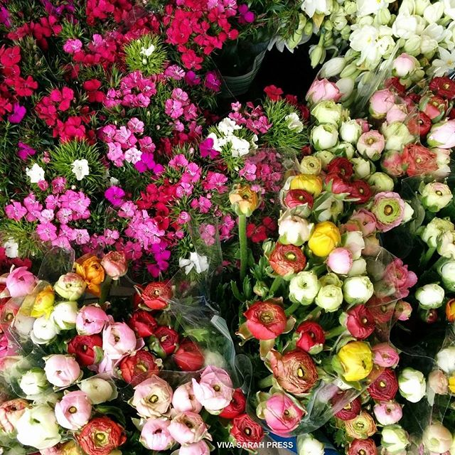 Beautiful flowers on display in Carmel Market. #TelAviv #Israel