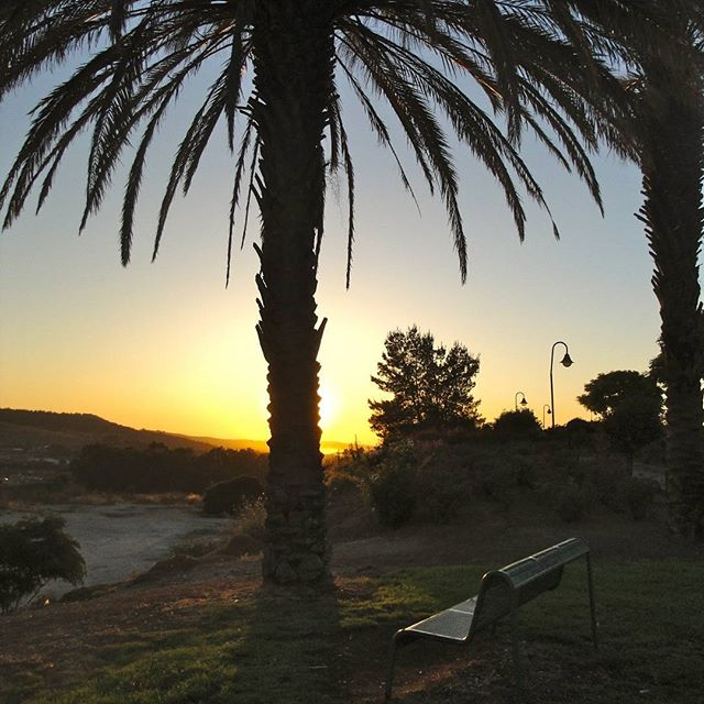 The sunset adds serenity to this park in #BetShemesh. #Israel  Photo credit: Daniel Santacruz