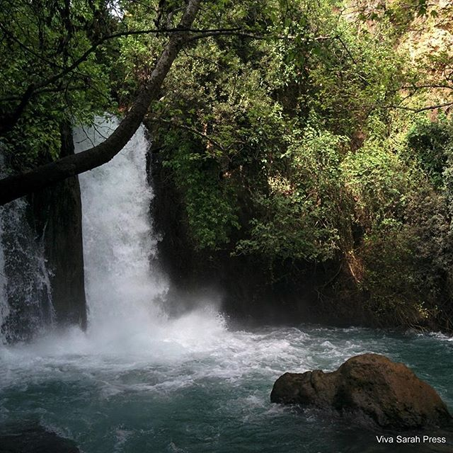 Israel\'s Banias Falls Nature Reserve is a site for sore eyes. #Israel #Banias  Photo credit: Viva Sarah Press