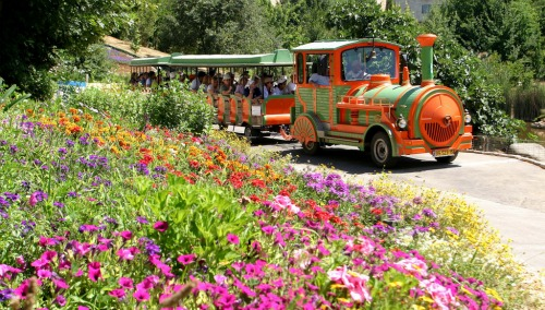 Jerusalem Botanical Gardens train