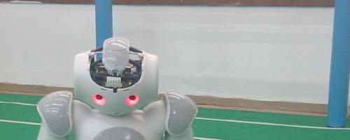 Robot-Soccer