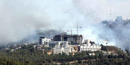 Forest fire near Jerusalem