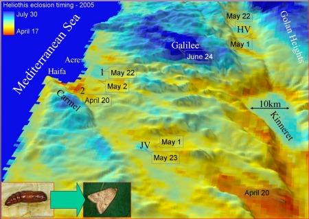 Micro-climates satellite indication