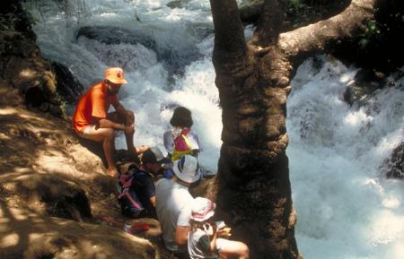 Hermon Stream (Banias) Nature Reserve
