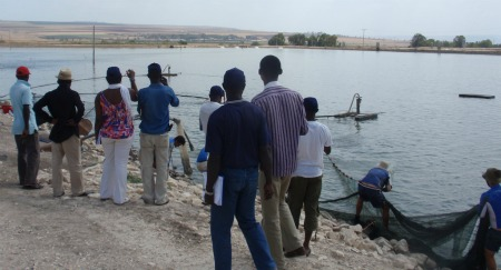 Nigerians fishing