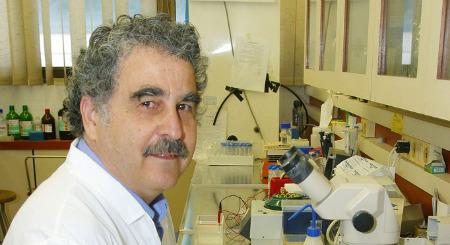 Prof. Haim Breitbart