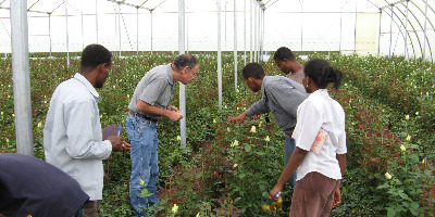 Dr Shimon Steinberg and growers