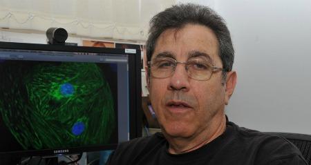 Prof. Benny Geiger