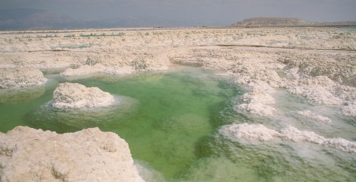 Nude bathing dead sea isreal apologise, but