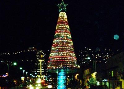 Christmas tree in Haifa